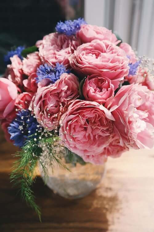 Bayside Garden Center & Milwaukee Florist | Flower Delivery by Bayside Garden Center
